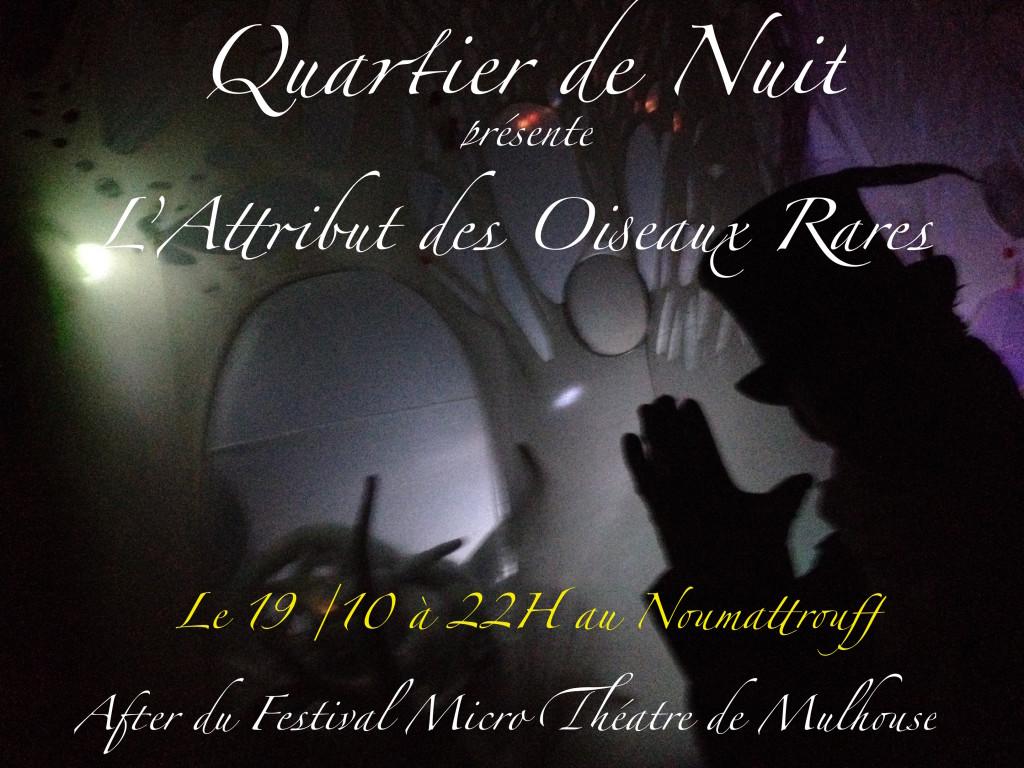 Aff Oiseaux Rares Micro Théatre 2018